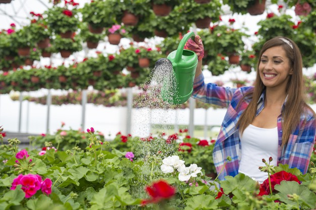 gorgeous-woman-florist-with-toothy-smile-her-face-watering-plants-greenhouse-flower-center_342744-18